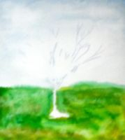 Solo Tree - color - WIP - sky and ground by muridaee