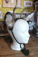 New Real Deer Antler and Ear Sets by lupagreenwolf