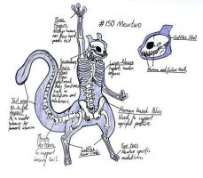 Mewtwo- Anatomical Study by Oh-Ninja-Please