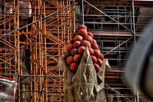 Sagrada familia detail 1 by forgottenson1