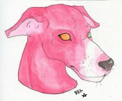 Pink Sighthound by comrade-carpet