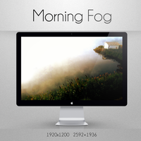 morning fog by vir06