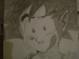 Dragon Ball Drawings 16 by justSiLeNtWaLkEr
