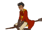 lets play quidditch by davesexual