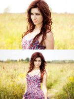brooklyn by SusanCoffey
