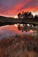 Lakes sunsets woods by Fishermang