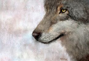 Pastel wolf painting art print by peeched