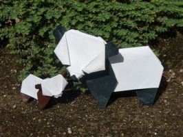 Pandas by Figuer