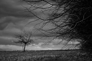 Dark Atmosphere by fti7