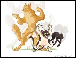 My cats by David230674