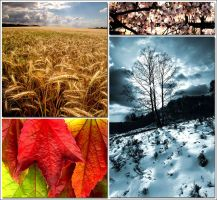 Four Seasons... by MichiLauke