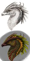 Gryphon-Dragon OC concept by Copper-Wolff