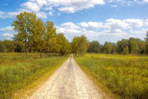 Dirt Road HDR by joelht74