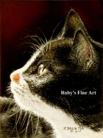 """Tuxedo Kitty"" - Realism by robybaer"