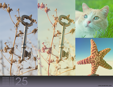 PS Action 25 by Liinh
