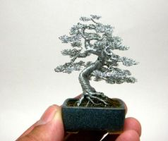 Wire bonsai sculpture by KenToArt
