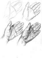 Hand in four stages by samkitsch