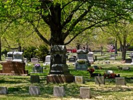 Cemetary V by Baq-Stock