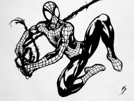 Ultimate Spidey Inks by xenomorph01