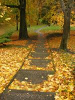 Autumn, Winckley Square by Softspoken-One