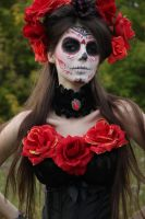Drawing reference: Bella Muerta 2 by LetzteSchatten-stock