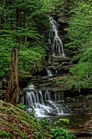 Ricketts Glen by Nefarious069