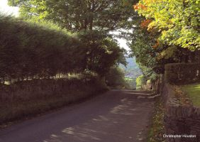A lovers' lane in Sheffield by squareprismish