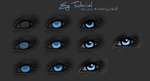 White's .:. Eye Tutorial:. by WhiteSpiritWolf