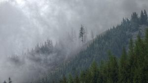 Misty Mountains by Toghar
