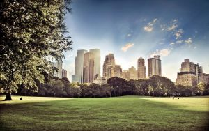 Central Park Awakening by PeterKruczek