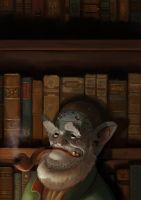 The Librarian by Talib-PB