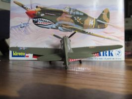 P-40B: 8th Pursuit Group: Rear View by cloudyrainbow561