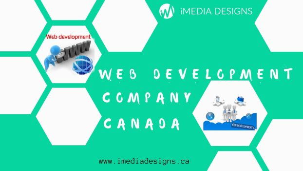 Custom Web Development Company by iMedia11