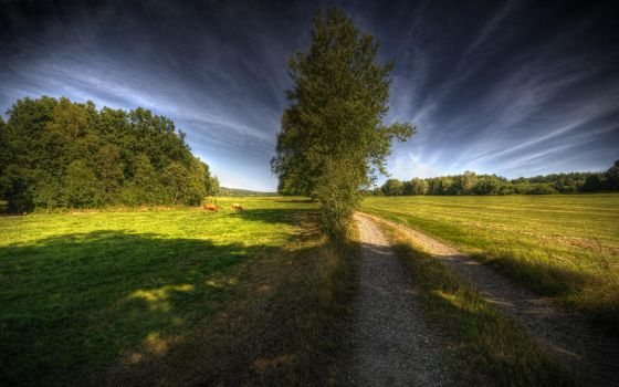 Way To Heaven Wallpaper by MarcoHeisler