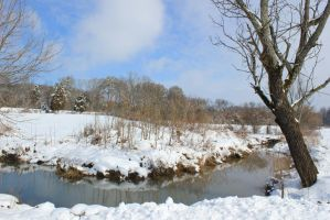 Snowy Creek Scene - Feb 2014 by CrystalMarineGallery