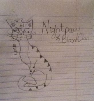 Revised drawing of Nightpaw by amourmazing