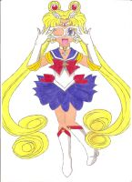 Bishoujo Senshi Sailor Moon by animequeen20012003