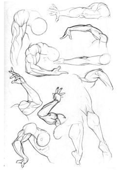 Sketchbook: Arms Pg1 by Bambs79