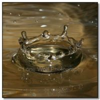 WD  Water Crowns  004 by LoneWolfPhotography