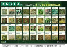 Poster publicitaire Basta by JFDC