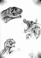 Dino busts sketches by big-black-and-scary