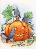 the greys and the pumpkin by asio-otus-otus