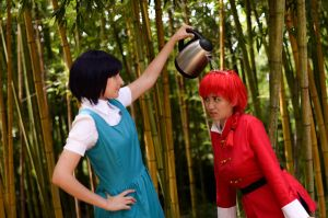 Akane Pours Water on Ranma: Aw really by firecloak