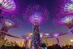Gardens by the Bay by eduardj
