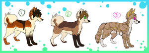 Dog Adoptables by Dark-Pangolin
