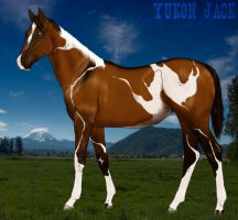 Yukon Jack by Huntress614