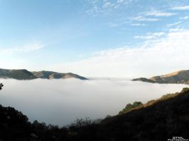 Sea of Mist by OneofakindKnight