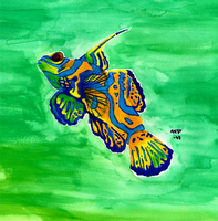 Mandarinfish by xXHONORguardXx
