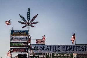 Hempfest Main Stage 2 by OcularInflux