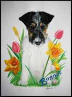 Puppy In A Flowerpatch by Bonniemarie